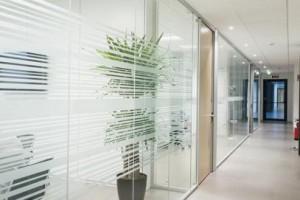 Mattierte Glaswände zum Abtrennen von Räumen